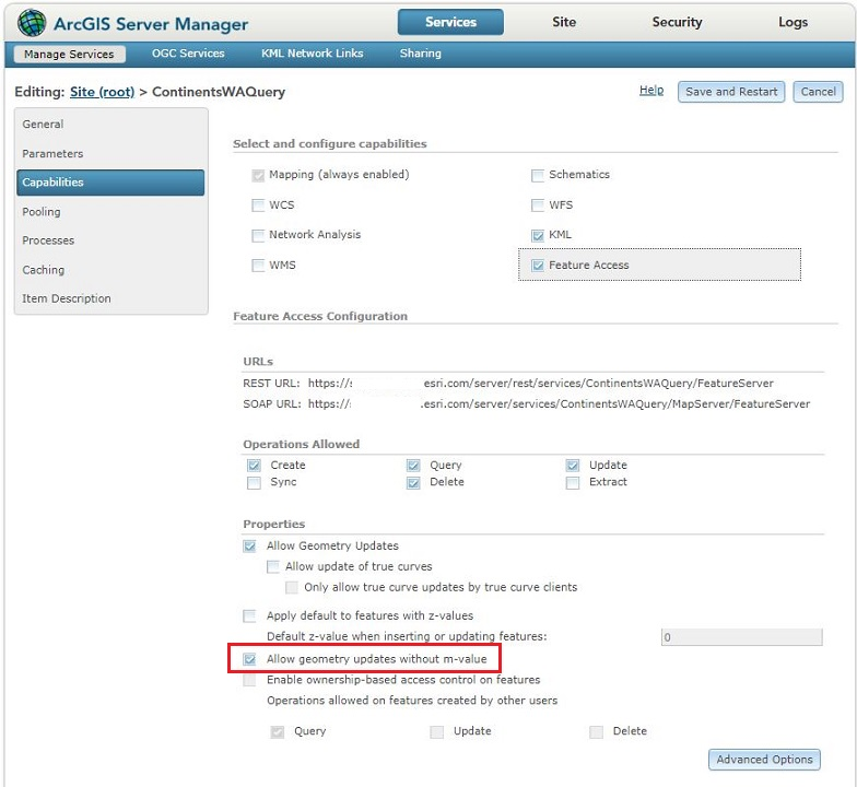 Image of the ArcGIS Server Manager Properties section