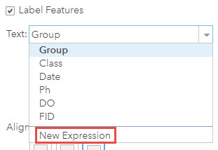 Screenshot of the label option with New Expression