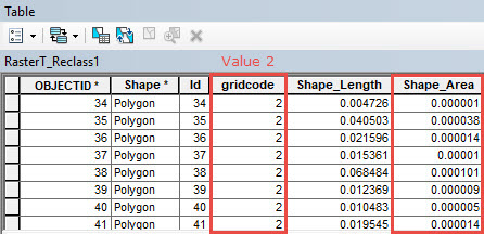 Attribute table of the polygon feature class