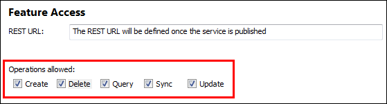 An image of the feature service operations checkbox.