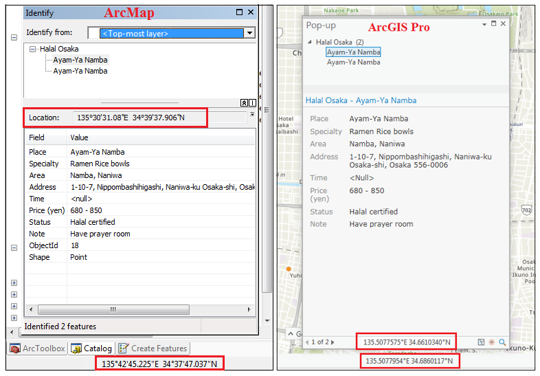 This is the XY data displayed in ArcMap (left image) and ArcGIS Pro (right image).