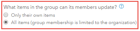 'What items in the group can its members update?' option