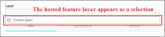 The hosted feature layer appears as a selection