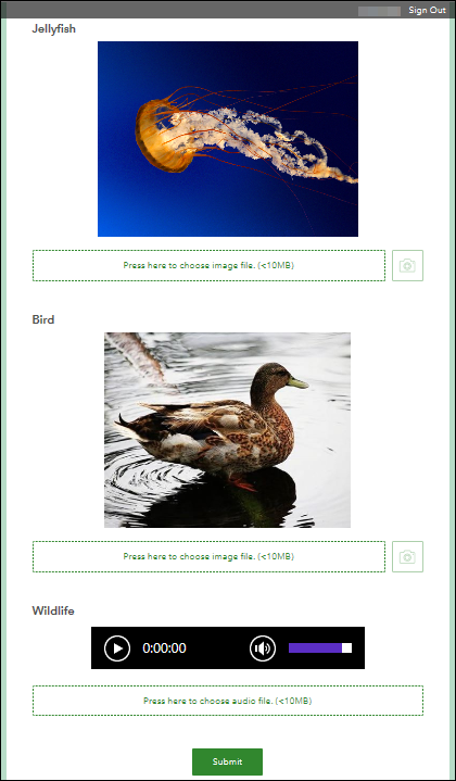 The Bird and Jellyfish images, and Wildlife audio are displayed correctly in the Survey123 for ArcGIS web app