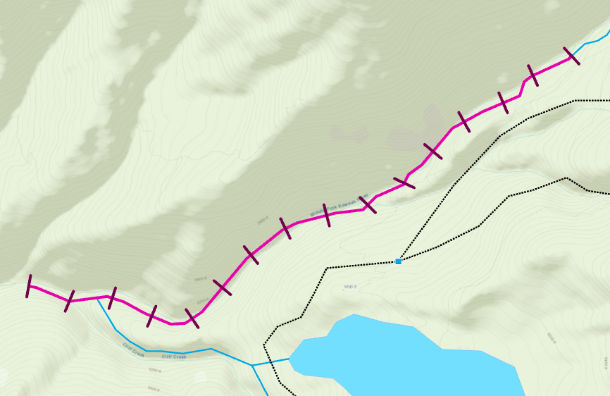 Transects created along the line feature