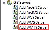 Add WMTS Service