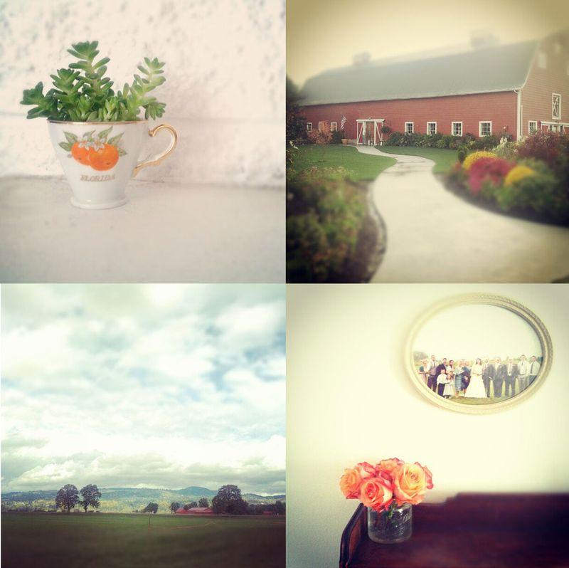 Instagram-fall