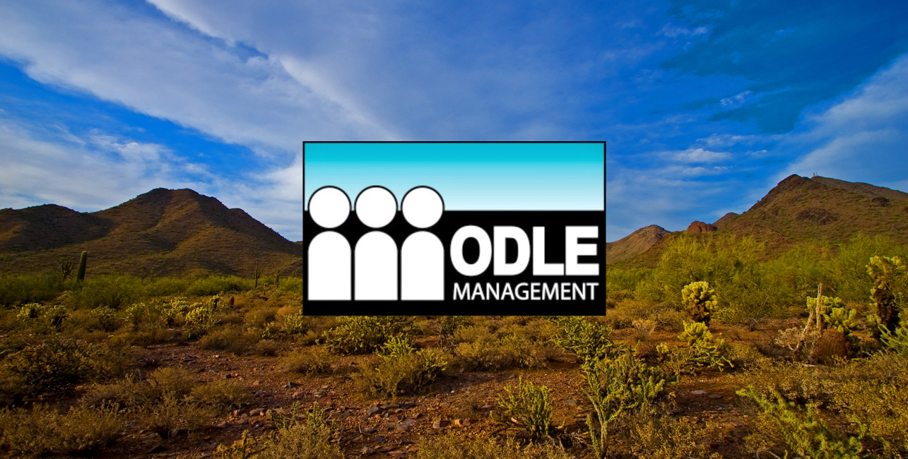 Odle Management Group