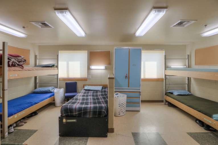 Curlew_Dorm34
