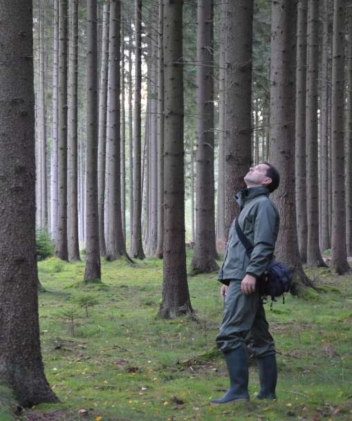 An Advanced Forestry Technician inspects the health of the trees in a forest