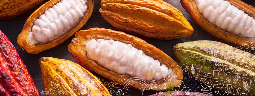 Insumos y productos peruanos