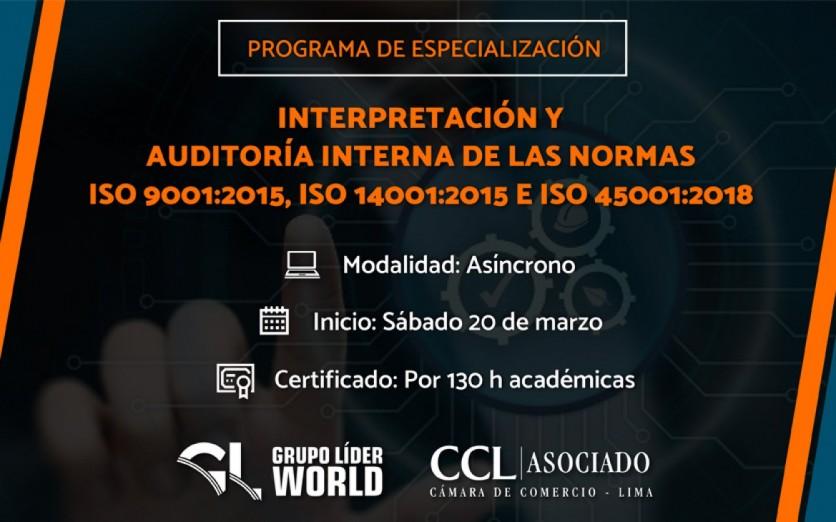 Programa: Interpretación y Auditoría Interna de las Normas