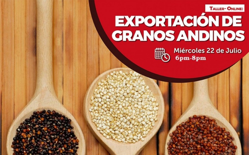 EXPORTACION DE GRANOS ANDINOS