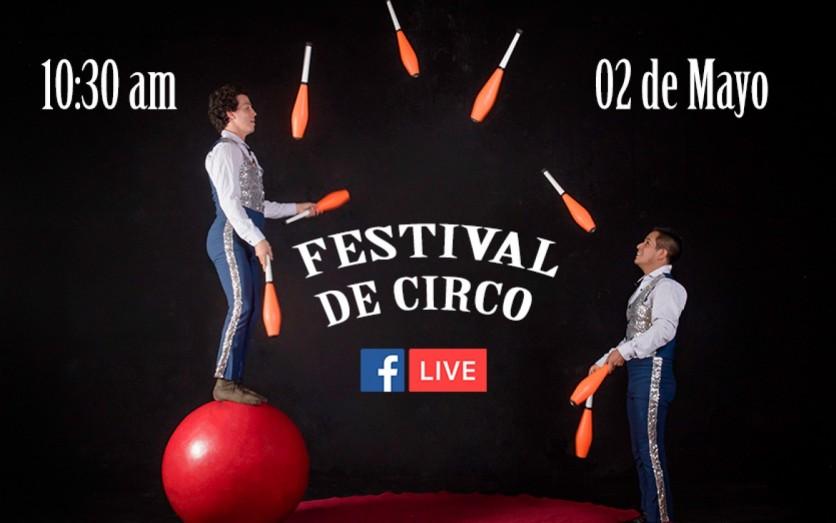 Festival de Circo LIVE