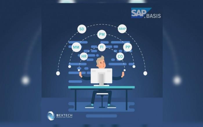 SAP Basis (LIMA)