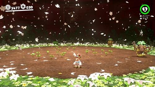 守れ!ヒミツの花バタケ-マリオオデッセイ