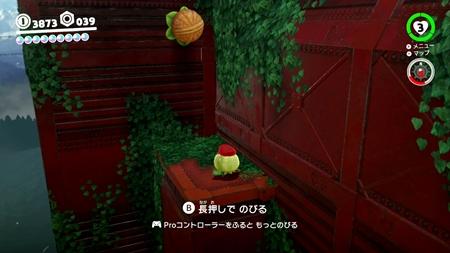 突き当り木の実-スーパーマリオオデッセイ
