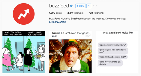 The Best Instagram Bio Ideas -  Make sure you're relatable