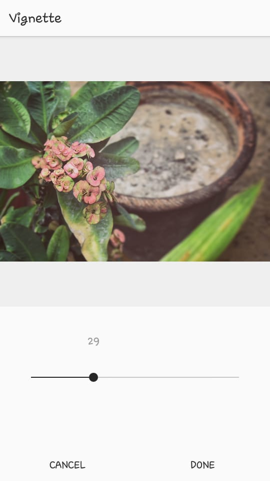 Instagram Vignette at 29 Percent | Edit Instagram Pics Like a Pro | Jumper Media