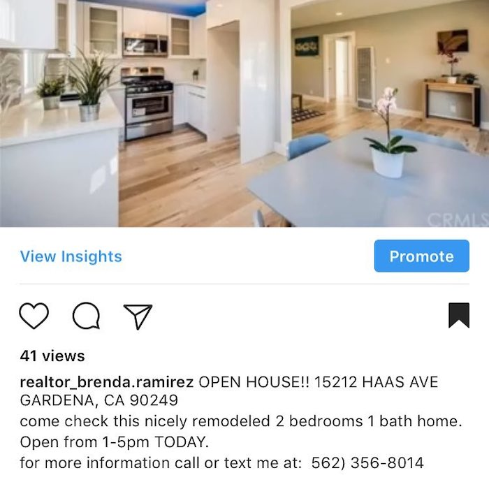 Realtor's Capture Instagram Leads with Call to Action