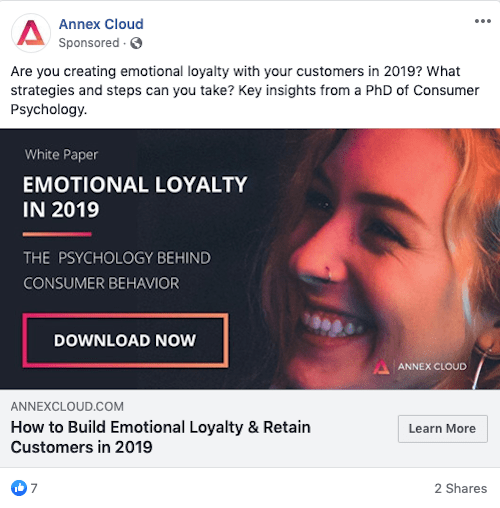 Facebook Targeting Advertising Ad Post Example