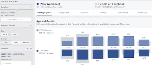 Facebook Audience Insights Graph