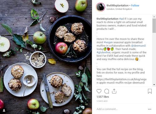 foodie-instagram-influencer-marketing-campaign