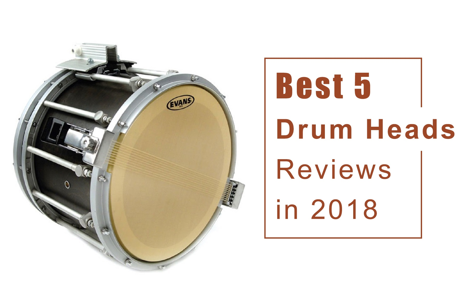 Best 5 Drum Heads Reviews
