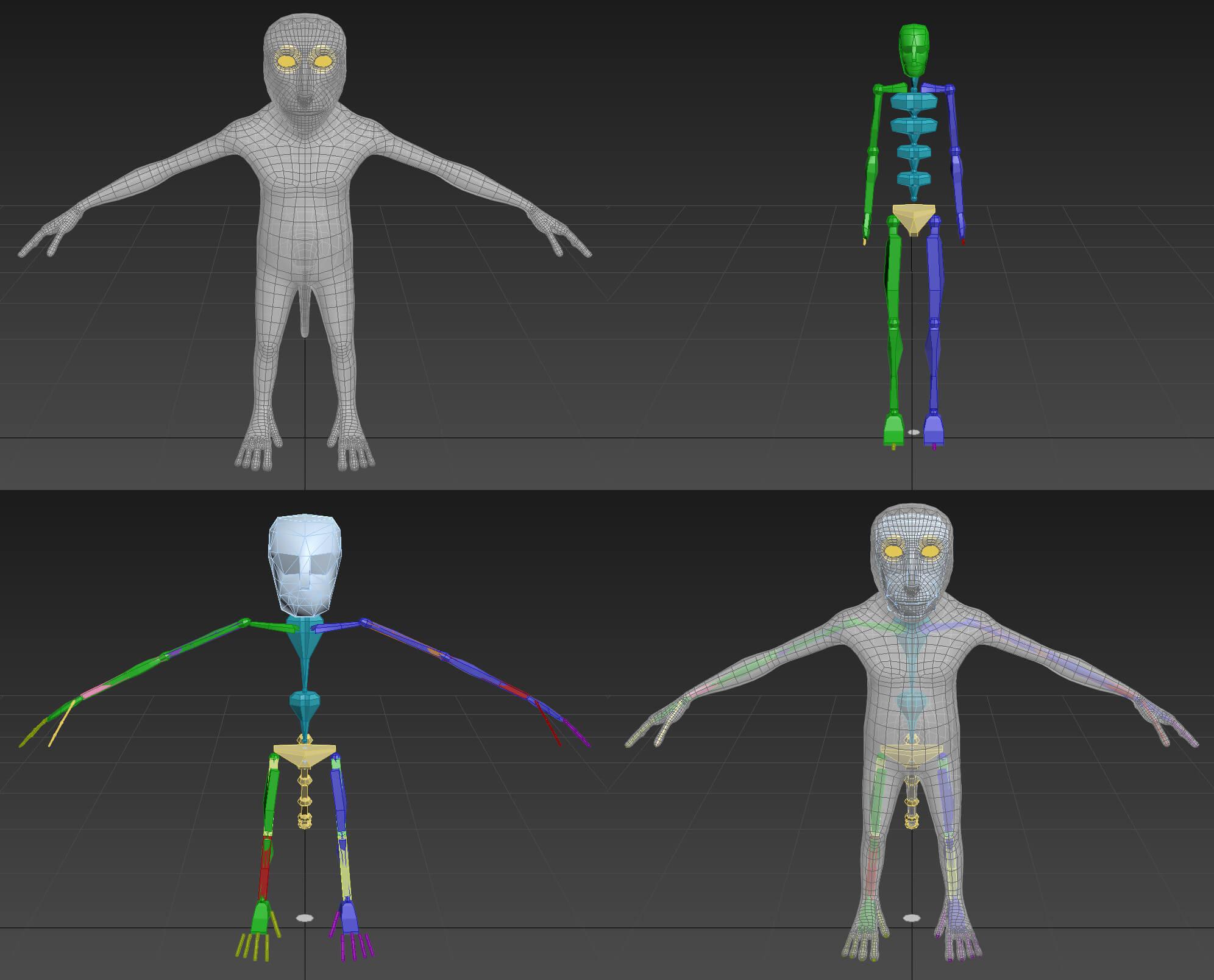 SizingSkeleton