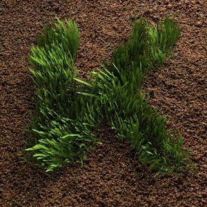KEEN Creative grass