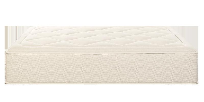 Shop the Tea Leaf Dream mattress