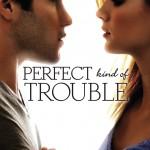 Fine_PerfectKindofTrouble_ebook (2) copy