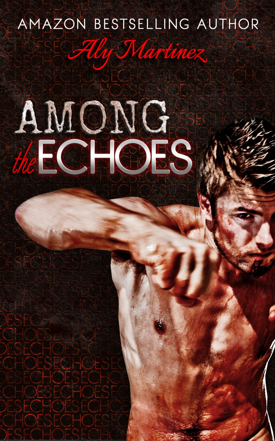 In Review: Among the Echoes (Wrecked & Ruined #2.5) by Aly Martinez