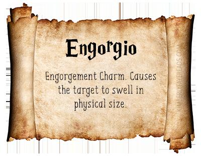 Engorgio