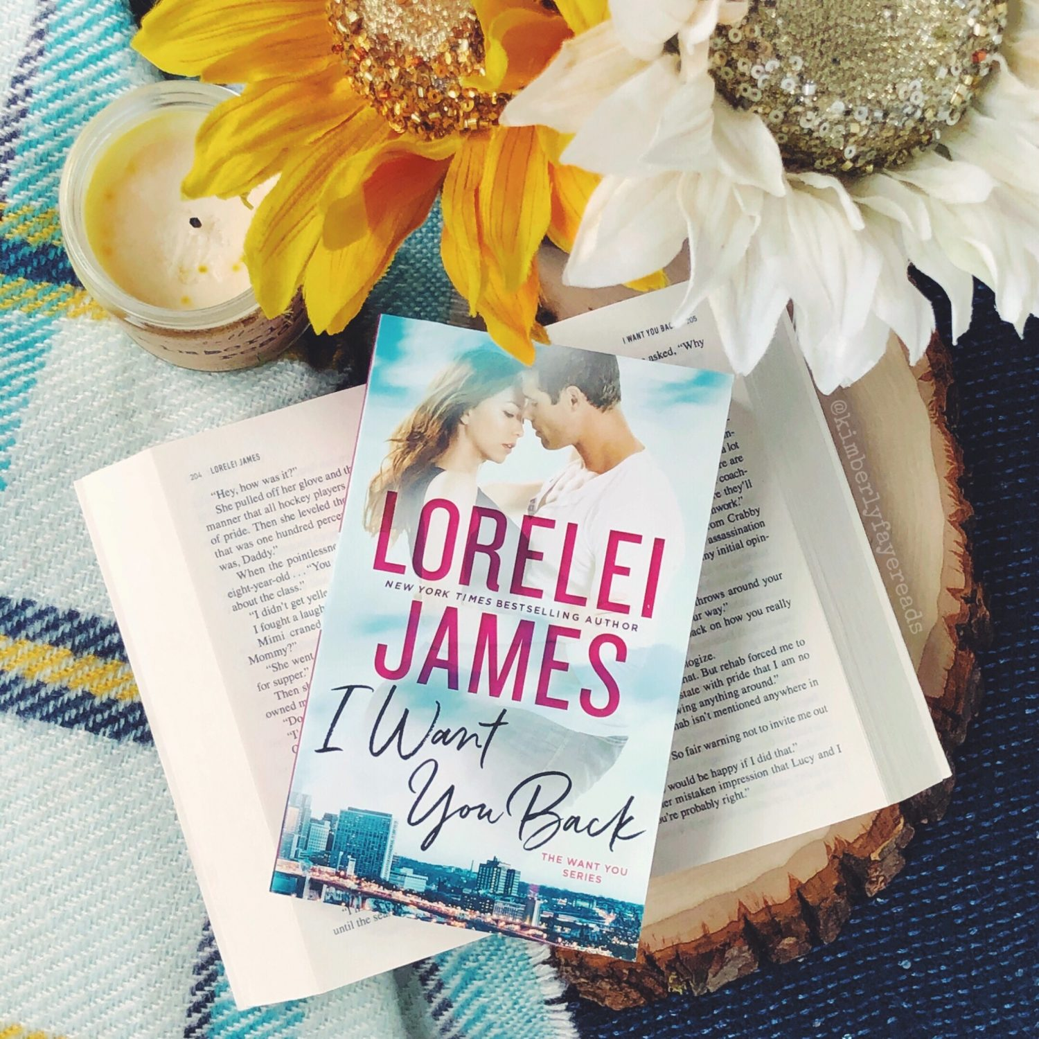 In Review: I Want You Back (Want You #1) by Lorelei James