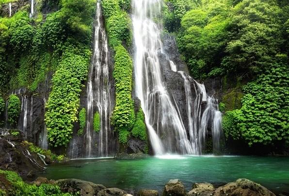 Costa-Rica-Jungle-January-latest-Waves