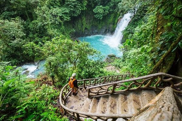 Costa-Rica-Jungle