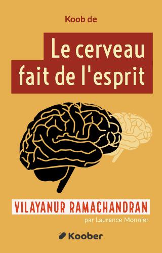 Le cerveau fait de l'esprit