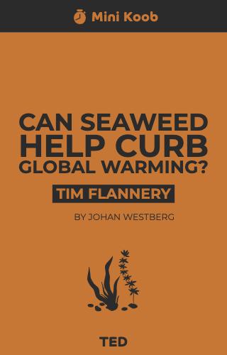 Can Seaweed Help Curb Global Warming?