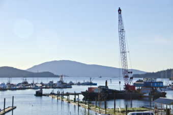 A construction barge from Pacific Pile and Marine of Seattle is docked in Statter Harbor.