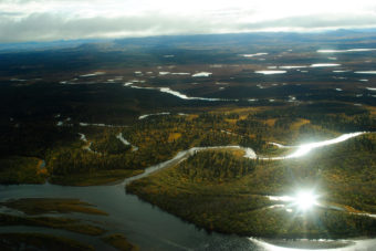 The Mulchatna River lies at the heart of the Nushagak watershed. All five Pacific salmon species spawn in the Mulchatna and it's tributaries - which include the Koktuli and Stuyahok Rivers.