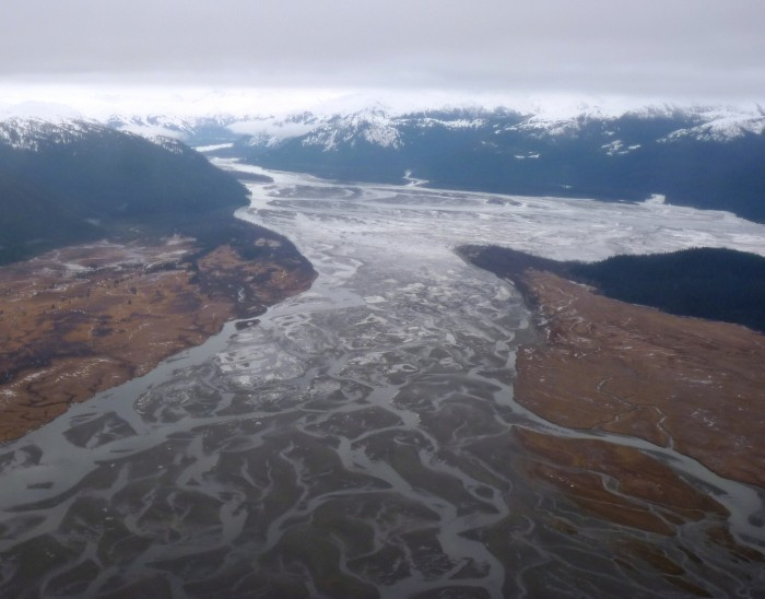 The Stikine River Delta, as seen from the air. The chinook subsistence fishery on the river has been closed. Photo by Ed Schoenfeld, CoastAlaska News.