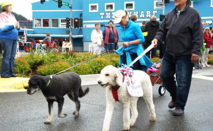 The Yankee Doodle Dogs.