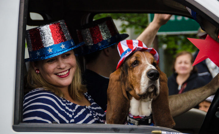 Patriotic pups were all over town yesterday as part of the festivities.
