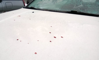 Blood from the man who was shot Friday at the Coho Park Apartments ended up on the hood of one resident's car. (Photo by Jeremy Hsieh/KTOO)