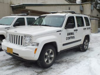 Juneau Animal Control vehicles