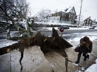 In Philadelphia on Wednesday, a woman ducked under a utility line that was brought down when an ice-covered tree fell. Matt Rourke/AP