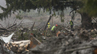 Crews work at the mudslide site Oso, Wash., Saturday, one week after a massive mudslide devastated a small community. Officials have dropped the number of missing people from 90 to 30. David Ryder/Getty Images