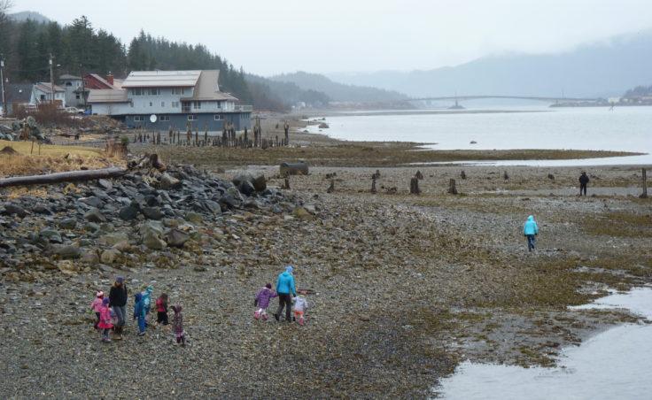 Preschoolers walk across tidal flats to view an orca pod off Douglas Island Thursday afternoon. (Ed Schoenfeld/CoastAlaska News)