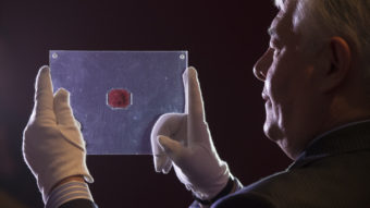 """David Redden of Sotheby's auction house holds a case containing the sole-surviving """"British Guiana One-Cent Black on Magenta"""" stamp dating from 1856. Oli Scarff/Getty Images"""